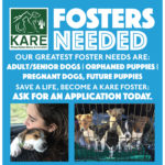 Learn More about Becoming a KARE Foster