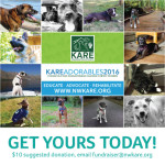 Calendar AVAILABLE NOW! Email us at  fundraiser@nwkare.org for details